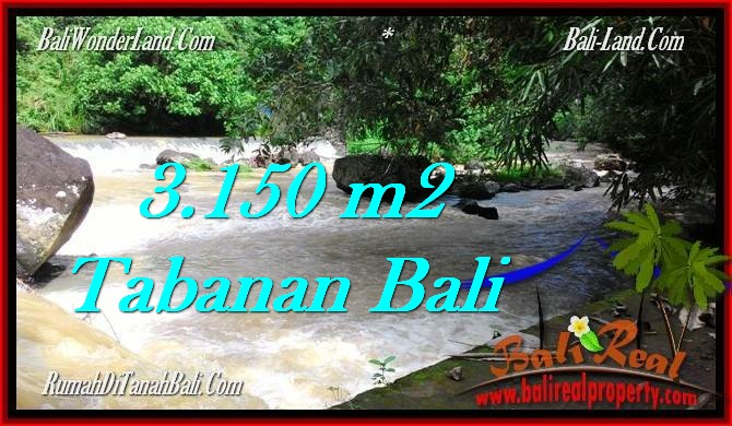 FOR SALE Exotic 3,150 m2 LAND IN TABANAN BALI TJTB282