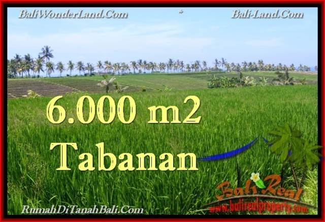 Magnificent LAND FOR SALE IN TABANAN TJTB267