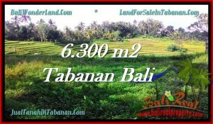 FOR SALE Exotic 6,300 m2 LAND IN TABANAN TJTB275