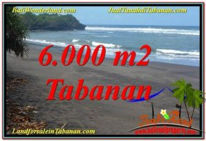 Beautiful PROPERTY Tabanan Selemadeg BALI 6,000 m2 LAND FOR SALE TJTB345