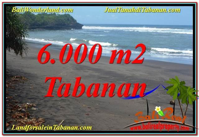FOR SALE Affordable PROPERTY 6,000 m2 LAND IN Tabanan Selemadeg TJTB345