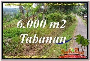 FOR SALE Beautiful LAND IN Tabanan Selemadeg TJTB349