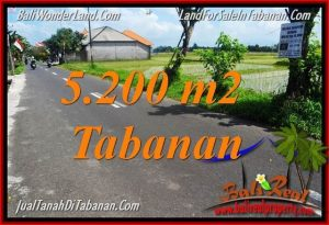 Magnificent PROPERTY LAND SALE IN TABANAN TJTB351