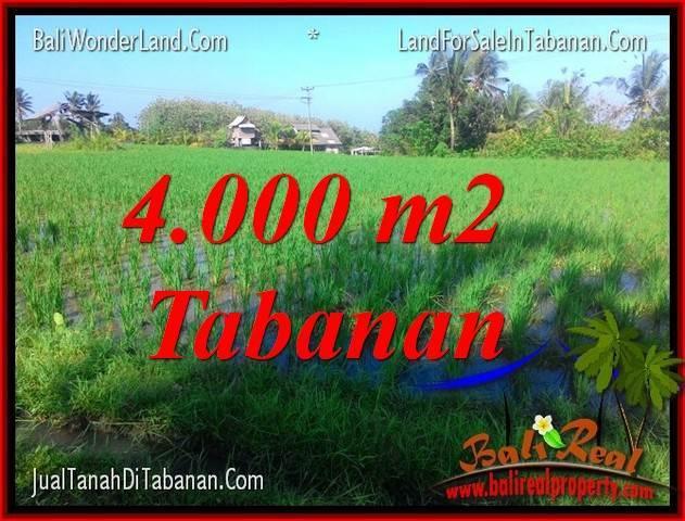 Affordable PROPERTY 4,000 m2 LAND FOR SALE IN TABANAN TJTB352
