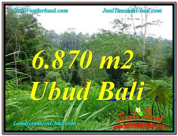 Beautiful 6,870 m2 LAND FOR SALE IN UBUD BALI TJUB602