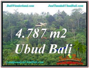 Affordable 4,787 m2 LAND IN UBUD BALI FOR SALE TJUB603