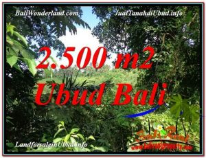 Exotic UBUD BALI 2,500 m2 LAND FOR SALE TJUB605