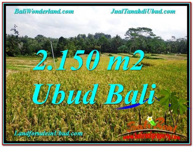 FOR SALE Beautiful PROPERTY LAND IN Ubud Tegalalang BALI TJUB606