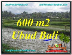 Magnificent 600 m2 LAND SALE IN UBUD BALI TJUB607