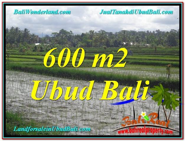 600 m2 LAND FOR SALE IN UBUD BALI TJUB607