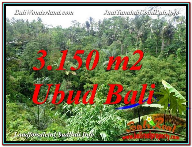 Magnificent PROPERTY 3,150 m2 LAND SALE IN UBUD BALI TJUB608