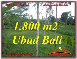 Magnificent Ubud Tegalalang BALI LAND FOR SALE TJUB610