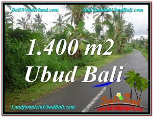 Affordable PROPERTY UBUD BALI 1,400 m2 LAND FOR SALE TJUB612