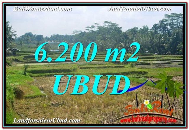 FOR SALE Magnificent LAND IN Ubud Payangan TJUB631