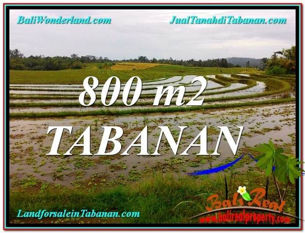 Affordable PROPERTY 800 m2 LAND IN Tabanan Selemadeg BALI FOR SALE TJTB324