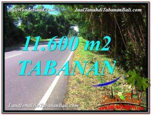 Affordable PROPERTY 11,600 m2 LAND IN TABANAN FOR SALE TJTB327