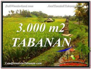 FOR SALE Affordable 3,000 m2 LAND IN TABANAN BALI TJTB328