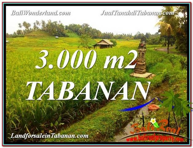 Beautiful TABANAN 3,000 m2 LAND FOR SALE TJTB328