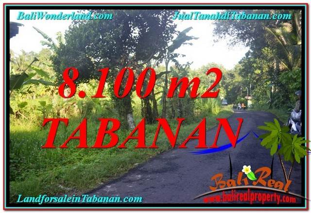 Magnificent PROPERTY 8,100 m2 LAND IN TABANAN BALI FOR SALE TJTB329