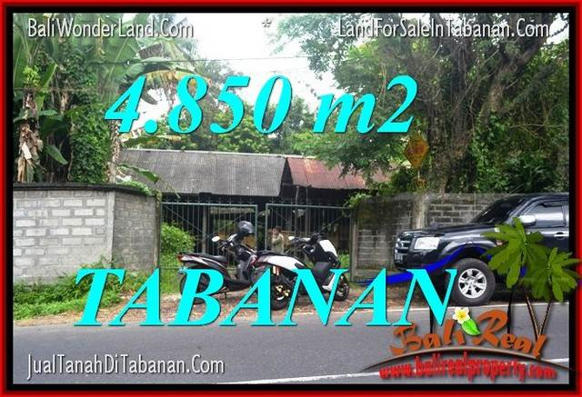 Magnificent 4,850 m2 LAND IN Tabanan Bedugul FOR SALE TJTB330