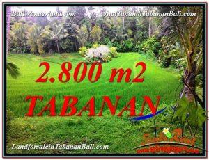 Exotic 2,800 m2 LAND FOR SALE IN Tabanan Selemadeg TJTB333