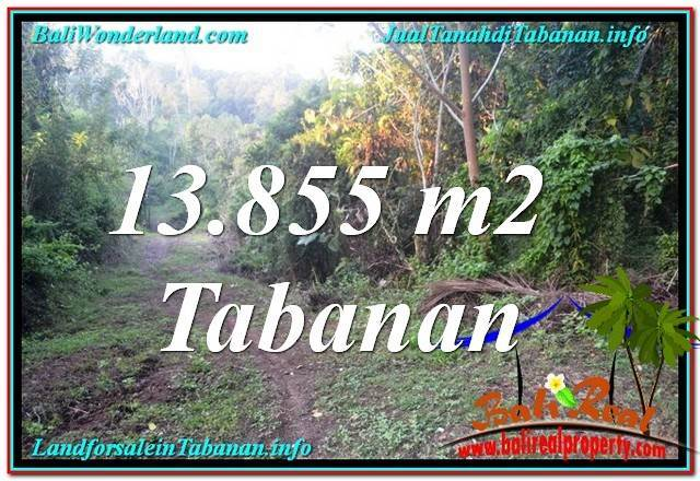 FOR SALE Affordable PROPERTY 13,855 m2 LAND IN Tabanan Selemadeg TJTB335