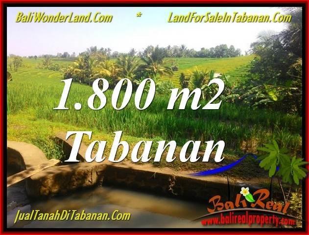 Beautiful PROPERTY LAND IN TABANAN BALI FOR SALE TJTB338