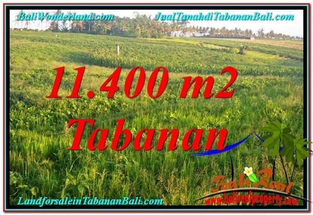 Magnificent LAND SALE IN Tabanan Selemadeg TJTB339