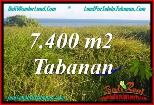 Exotic PROPERTY TABANAN LAND FOR SALE TJTB341