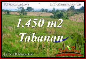 Magnificent 1,450 m2 LAND FOR SALE IN Tabanan Selemadeg TJTB343