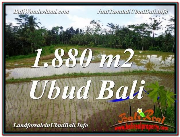 Magnificent 1,880 m2 LAND SALE IN UBUD BALI TJUB613