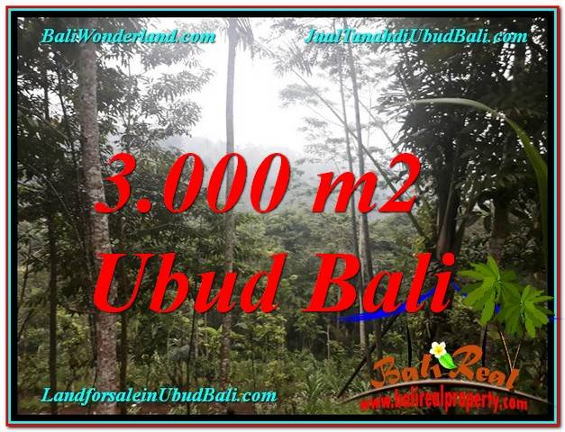 Affordable PROPERTY 3,000 m2 LAND FOR SALE IN Ubud Payangan TJUB617
