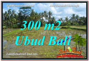 LAND SALE IN Ubud Pejeng BALI TJUB619