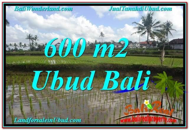 Magnificent PROPERTY Ubud Pejeng 600 m2 LAND FOR SALE TJUB621