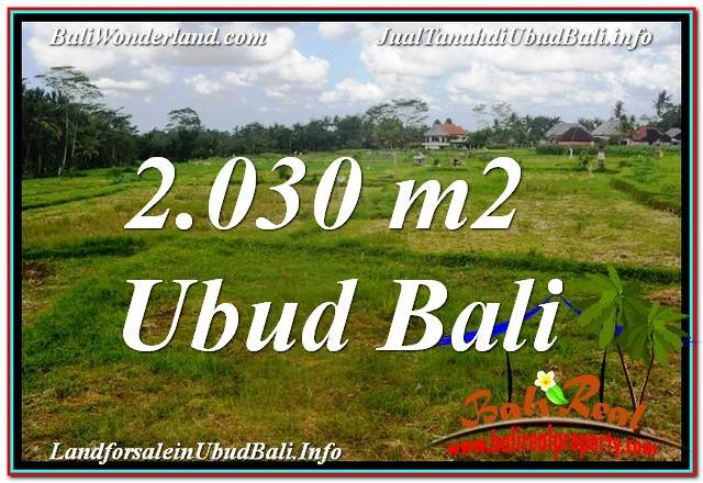 Beautiful PROPERTY 2,030 m2 LAND SALE IN Ubud Tegalalang TJUB623