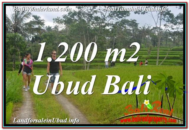 Beautiful PROPERTY 1,200 m2 LAND FOR SALE IN Ubud Tegalalang TJUB624