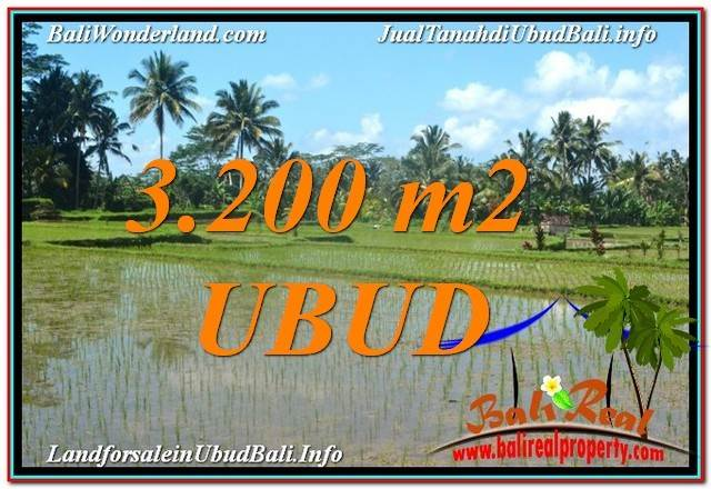 Magnificent 3,200 m2 LAND IN UBUD BALI FOR SALE TJUB628