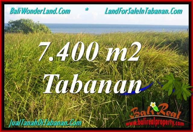 Exotic PROPERTY 7,400 m2 LAND FOR SALE IN Tabanan Selemadeg BALI TJTB341