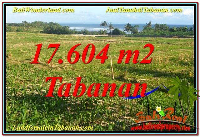 Magnificent PROPERTY 17,604 m2 LAND FOR SALE IN TABANAN BALI TJTB342