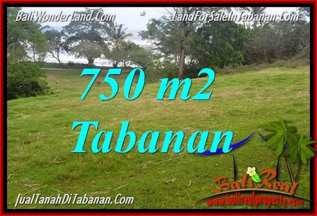Exotic PROPERTY 750 m2 LAND SALE IN TABANAN TJTB346