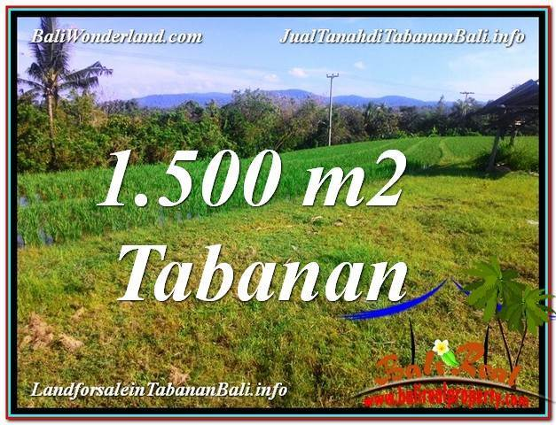 Magnificent PROPERTY LAND IN TABANAN BALI FOR SALE TJTB353