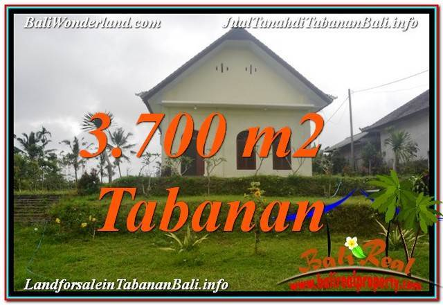 FOR SALE Beautiful 3,700 m2 LAND IN TABANAN BALI TJTB336