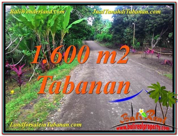 Magnificent PROPERTY 1,600 m2 LAND SALE IN TABANAN TJTB337