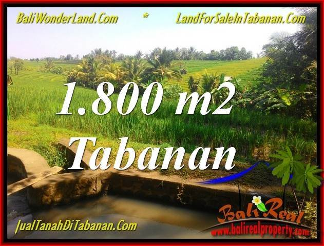 Magnificent 1,800 m2 LAND IN Tabanan Selemadeg FOR SALE TJTB338
