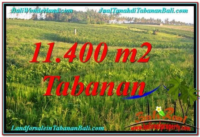 Beautiful LAND FOR SALE IN Tabanan Selemadeg BALI TJTB339