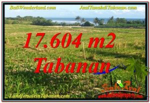 FOR SALE Beautiful PROPERTY 17,604 m2 LAND IN TABANAN TJTB342