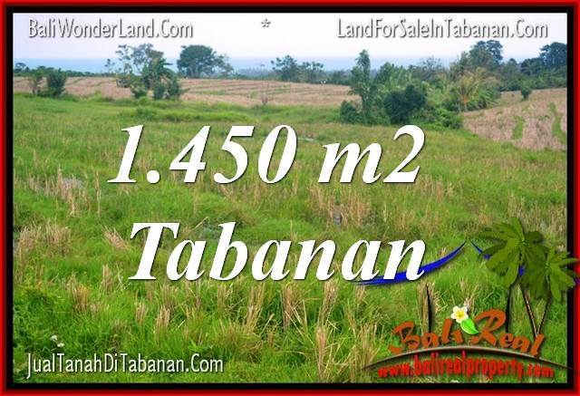 FOR SALE Affordable 1,450 m2 LAND IN TABANAN BALI TJTB343