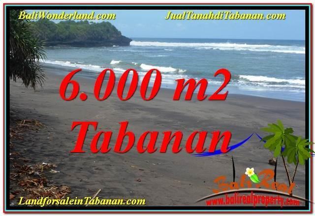 Exotic TABANAN 6,000 m2 LAND FOR SALE TJTB345