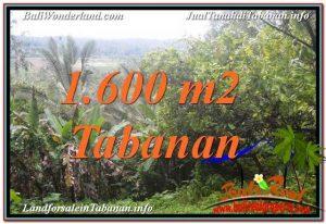 Beautiful Tabanan Selemadeg 1,600 m2 LAND FOR SALE TJTB348