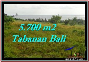 FOR SALE Beautiful PROPERTY 5,700 m2 LAND IN Tabanan Selemadeg TJTB250